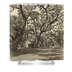 Southern Lane Sepia Shower Curtain by Steve Harrington