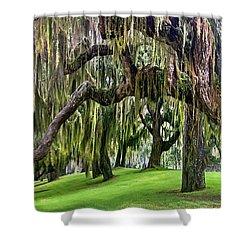 Spanish Moss Shower Curtain by Debra and Dave Vanderlaan