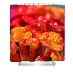 Sparkling Jeweltone Floral II Shower Curtain by Debbie Portwood