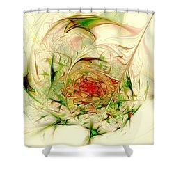 Special Place Shower Curtain by Anastasiya Malakhova