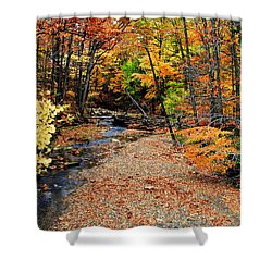 Spectrum Of Color Shower Curtain by Frozen in Time Fine Art Photography