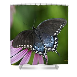 Spice Of Life Butterfly Shower Curtain by Christina Rollo