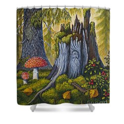 Spirit Of The Forest Shower Curtain by Veikko Suikkanen