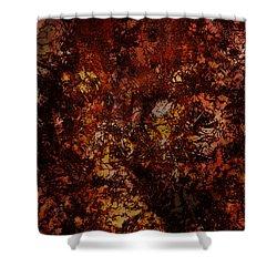 Splattered  Shower Curtain by James Barnes