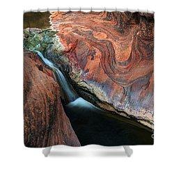 Splendor On Quail Creek Shower Curtain by Bob Christopher