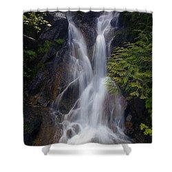 Split Top Falls Shower Curtain by Mike  Dawson