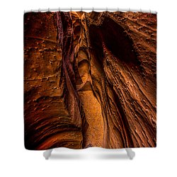 Spooky Colors Shower Curtain by Chad Dutson