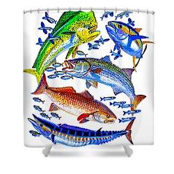Sportfish Collage Shower Curtain by Carey Chen