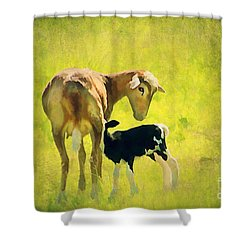 Spring Baby Shower Curtain by Darren Fisher