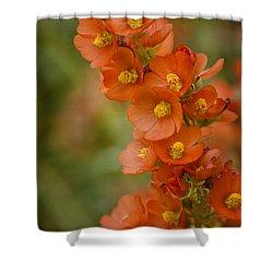 Spring Color  Shower Curtain by Saija  Lehtonen