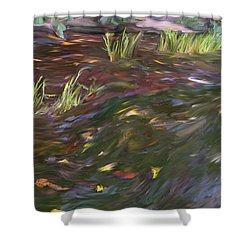 Spring Creek In Oak Canyon Park Shower Curtain by Angela A Stanton
