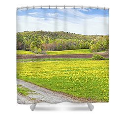 Spring Farm Landscape With Dirt Road And Dandelions Maine Shower Curtain by Keith Webber Jr