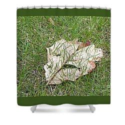 Spring Grass Growing Shower Curtain by Ann Horn