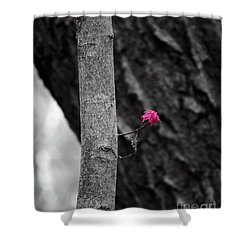 Spring Growth Shower Curtain by Steven Ralser