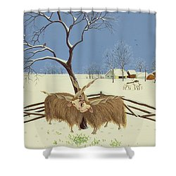 Spring In Winter Shower Curtain by Magdolna Ban
