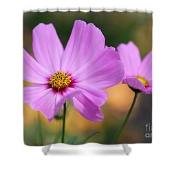 Spring Is Here Shower Curtain by Sabrina L Ryan