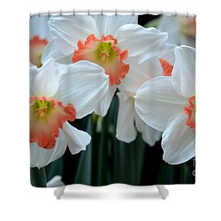 Spring Jonquils Shower Curtain by Kathleen Struckle