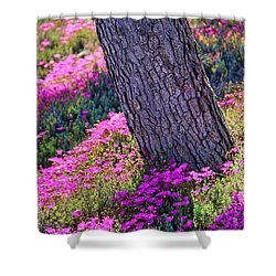 Spring Meadow Shower Curtain by Mariola Bitner