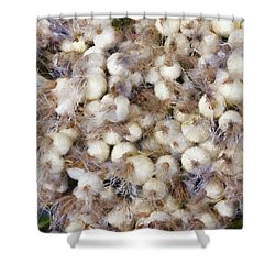 Spring Onions At The Market Shower Curtain by Michelle Calkins