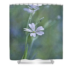 Spring Romance Shower Curtain by Maria Ismanah Schulze-Vorberg