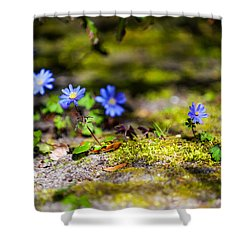 Spring Wild Flowers Shower Curtain by Jenny Rainbow