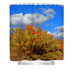 Springtime In Arizona Shower Curtain by James Welch
