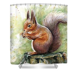 Squirrel Watercolor Art Shower Curtain by Olga Shvartsur