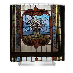 Stained Glass 3 Panel Vertical Composite 04 Shower Curtain by Thomas Woolworth
