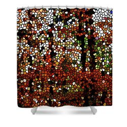 Stained Glass Autumn Colors In The Forest  Shower Curtain by Lanjee Chee