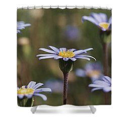 Standing Tall Shower Curtain by Caitlyn  Grasso