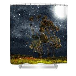 Starfield Shower Curtain by RC deWinter