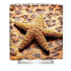 Starfish Enterprise Shower Curtain by Andee Design