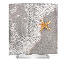Starfish In The Surf Shower Curtain by Diane Macdonald