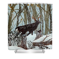 Startled Buck - White Tail Deer Shower Curtain by Barbara Griffin