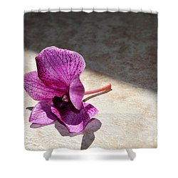 Still Beautiful Shower Curtain by Ramona Matei