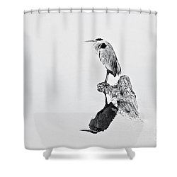 Still Hunter Shower Curtain by Scott Pellegrin