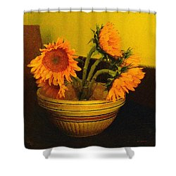 Still Life September Shower Curtain by RC deWinter