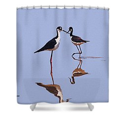 Stilts In The Blue Shower Curtain by Tom Janca