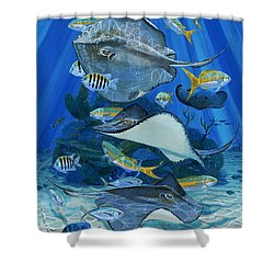 Stingray City Re0011 Shower Curtain by Carey Chen