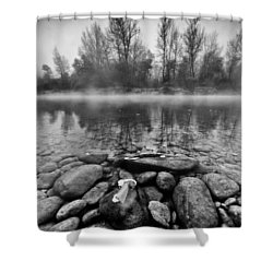 Stones And Trees Shower Curtain by Davorin Mance