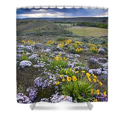 Storm Over Wildflowers Shower Curtain by Mike  Dawson