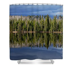 Storm Reflections Shower Curtain by Larry Ricker