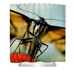 Straight On For You Shower Curtain by Lois Bryan