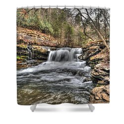 Stream Near Thurmond Wv Shower Curtain by Dan Friend