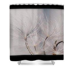 Strength Shower Curtain by Marija Djedovic