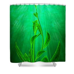 Striving Shower Curtain by John Edwards