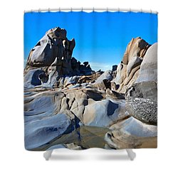 Stump Beach Shower Curtain by Daniel Furon