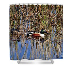 Stunning Shovelers Shower Curtain by Al Powell Photography USA