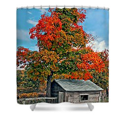 Sugar Shack Shower Curtain by Steve Harrington