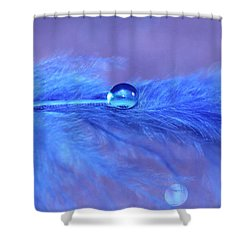 Sully Shower Curtain by Krissy Katsimbras